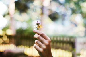 Rituais do espiritismo | Festas, batismo, crenças, costumes e mitos